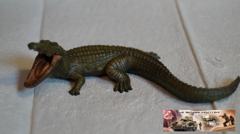 Parasaurolophus Crocodile--a002