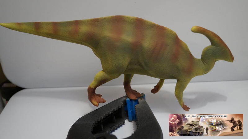 Parasaurolophus Parasaurolophus--c007