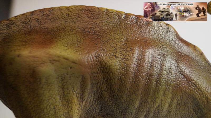 Parasaurolophus Parasaurolophus--d008